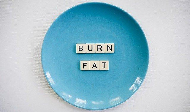 Comment agissent les brûleurs de graisse ?